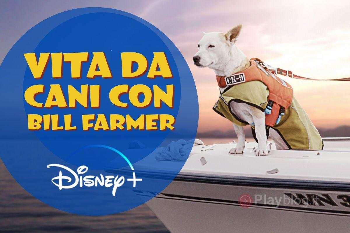 Vita da cani: una serie tv Originals su Disney+