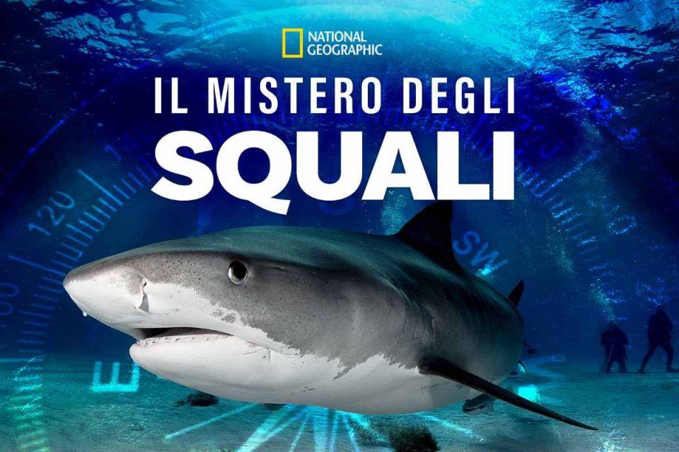 il mistero degli squali national geographic disney plus