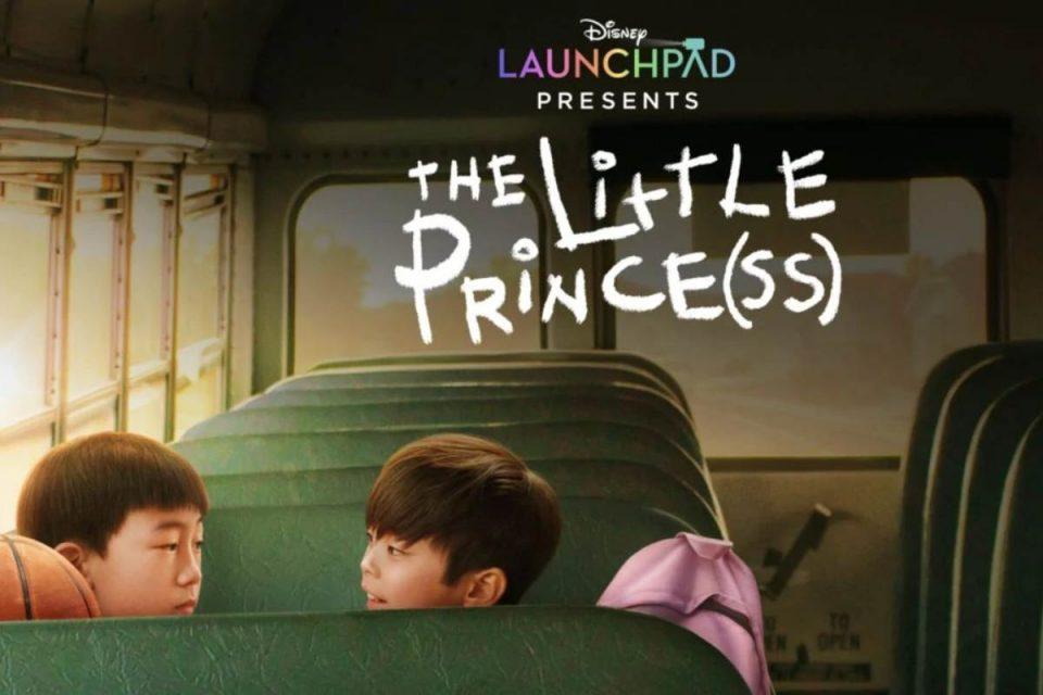 principe(ssa) the little princess disney